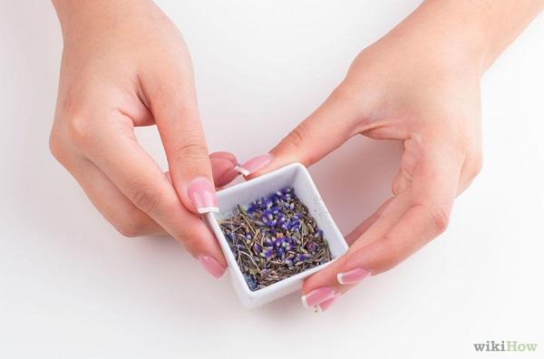 Cách làm tinh dầu hoa oải hương tại nhà bước 3