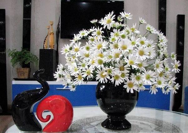 Mẹo giữ hoa cúc họa mi tươi lâu héo