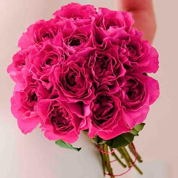 Những loại hoa hồng David Austin đẹp nhất hình ảnh 4